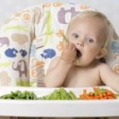Baby Led Weaning – Workshop Online