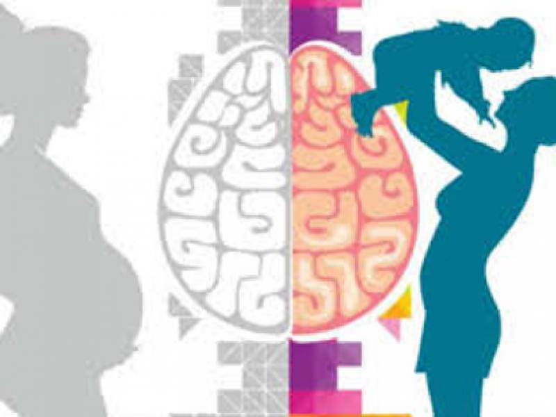 Gravidez, pós-parto e o cérebro da mulher
